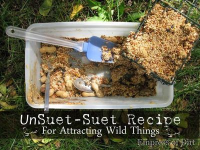 UnSuet-Suet Recipe For Feeding Birds