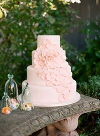 Pale Pink Romantic Wedding Cake