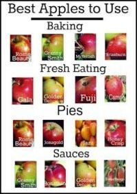 Easy Homesteading: Best Apples To Use