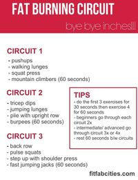 fat burining circut workout