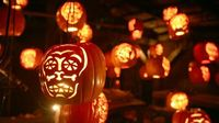 See more than 5,000 individually hand-carved, illuminated jack o' lanterns in this elaborate walk-through experience. The Great Jack O'Lantern Blaze Hudson, New York.