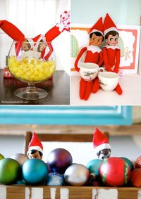 Cute cute elf on the shelf!