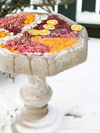 Isn't this a beautiful way to accessorize a winter bird bath, and feed the birds at the same time? The frozen birdbath consists of cranberries, kumquats and citrus slices with some white polished stones and pepperberries for decoration.