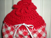 Plastic Bag Holder Red and White - Crochet