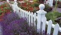 This brightly colored perennial garden is highlighted by a white picket fence.