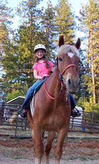 Horse Lessons in Grass Valley