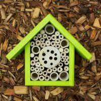 Bee and bug house for the garden