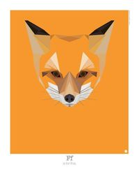 Graphic Art: Animal Alphabet by Mat Mabe Photo