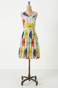 Primary Floral Anthro dress