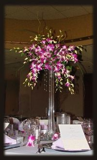 Orchids in Eiffel Tower