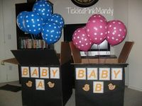 Twins Gender Reveal