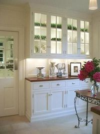 lit glass front cabinets